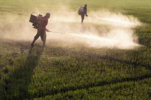 Men Spraying Paraquat